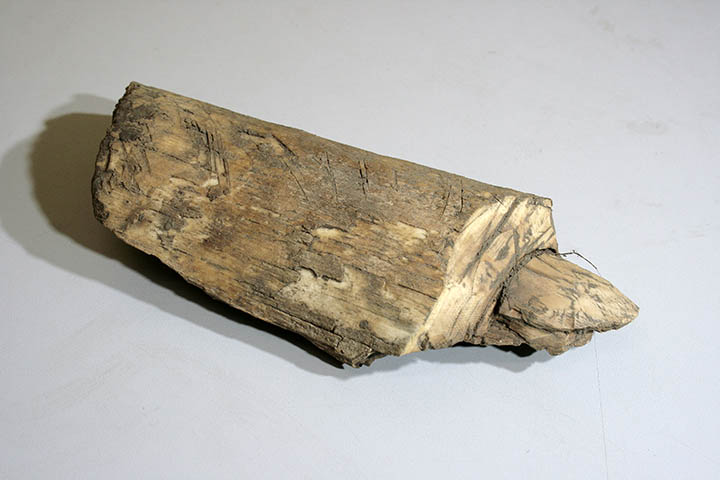 Tool blank made of mammoth's tusk